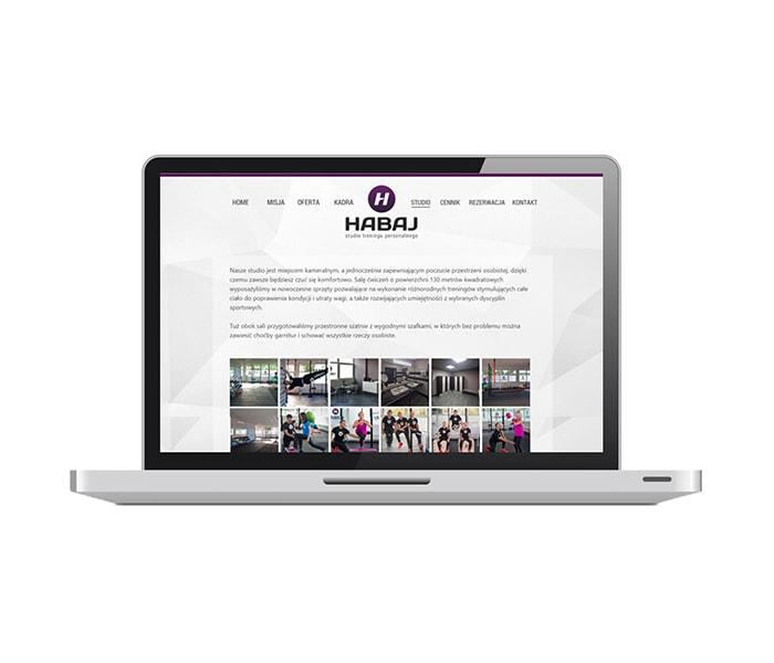 strona-internetowa-habaj.com.pl-glowna