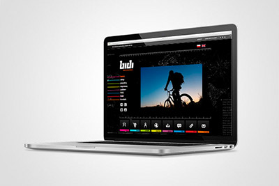 BIDI - projekt strony internetowej