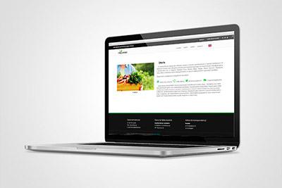 Freshmar - strona internetowa