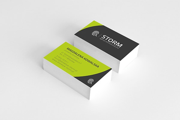 logo-detektyw-storm